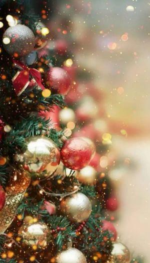 b_300__16777215_00_images_2019_93-december_moleben_5.jpg